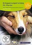 Entspannungstraining für Hunde: Stress, Ängste und Verhaltensprobleme reduzieren