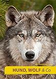 Hund, Wolf & Co.