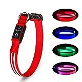 LED Hundehalsband Wiederaufladbare USB Leuchthalsband 100% Wasserdichtes Leuchtendes Hunde Halsband Einstellbare Super Helle für Kleine Mittlere Große Hunde - Rot - L
