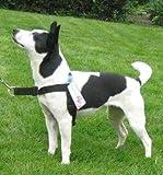 Walk Your Dog With Love Anti-Zieh-Hundegeschirr, Führung vorne, in grün mit reflektierendem Scotchlite-Material