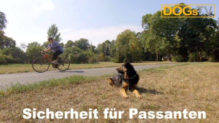 platz-auf-distanz-fahrrad-vorbei-lassen-dogstv