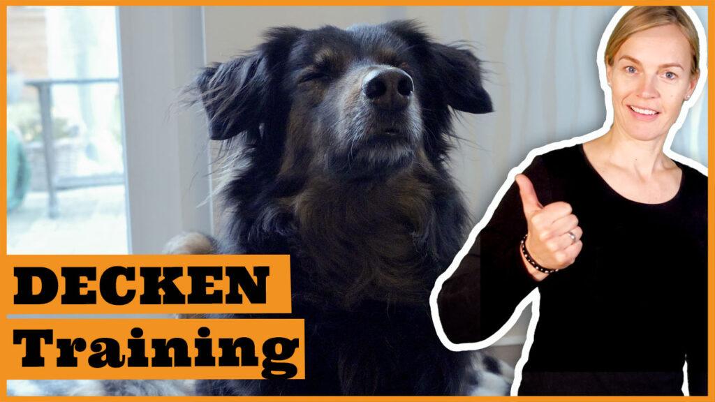 deckentraining hund dogstv