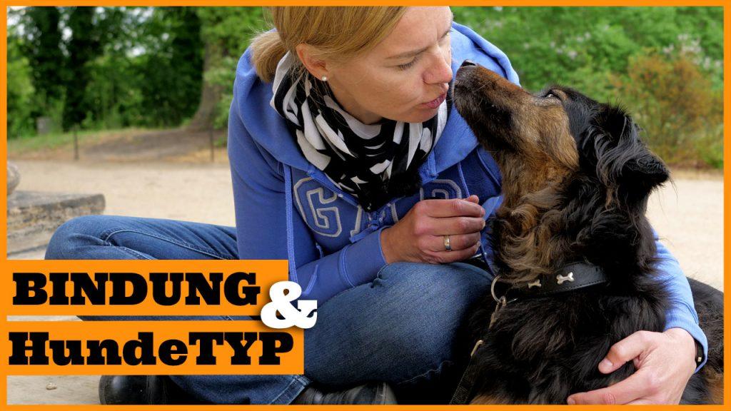 bindung zum hund aufbauen dogstv