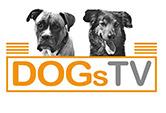 DogsTV Logo